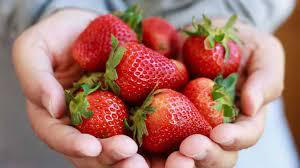 home-berry-box-france-site-officiel-ou-trouver-commander
